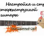 Настройка и строй бас-гитары