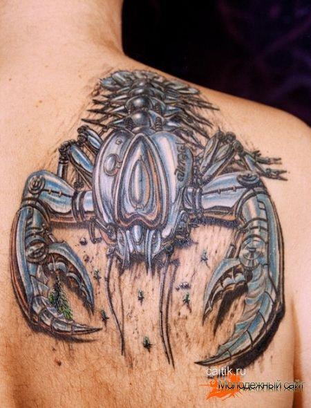 татуировки скорпионов