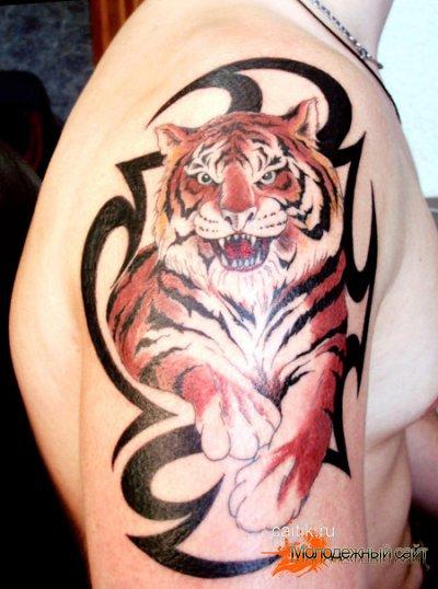 татуировка тигра на плече
