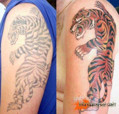 татуировки тигров на плече