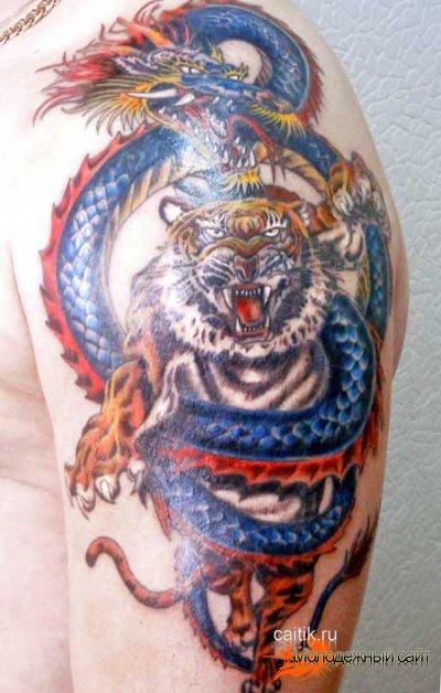 татуировки тигра с драконом на плече
