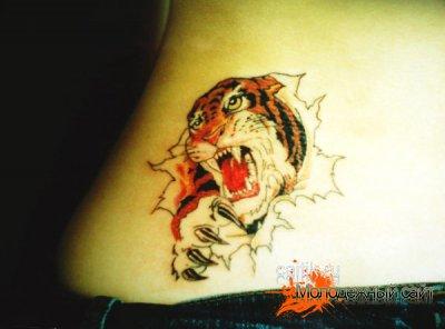 татуировка тигра на пояснице