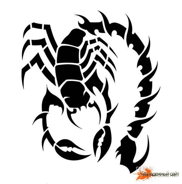 тату скорпион эскизы - эскизы.