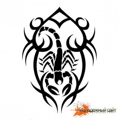 Эскизы татуировки скорпиона