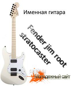 Fender jim root stratocaster