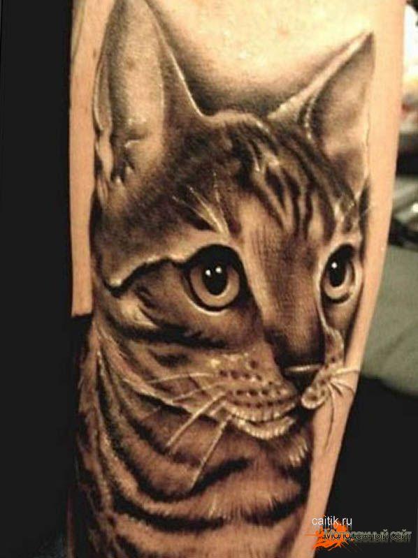 Татуировки кошек для девушек