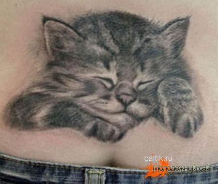 татуировки котят