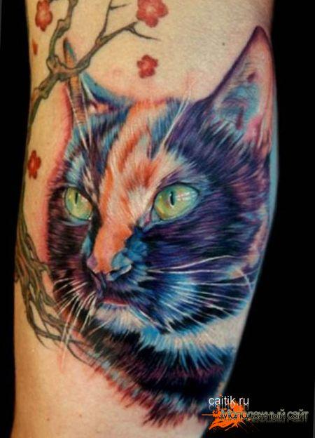 татуировки кошек