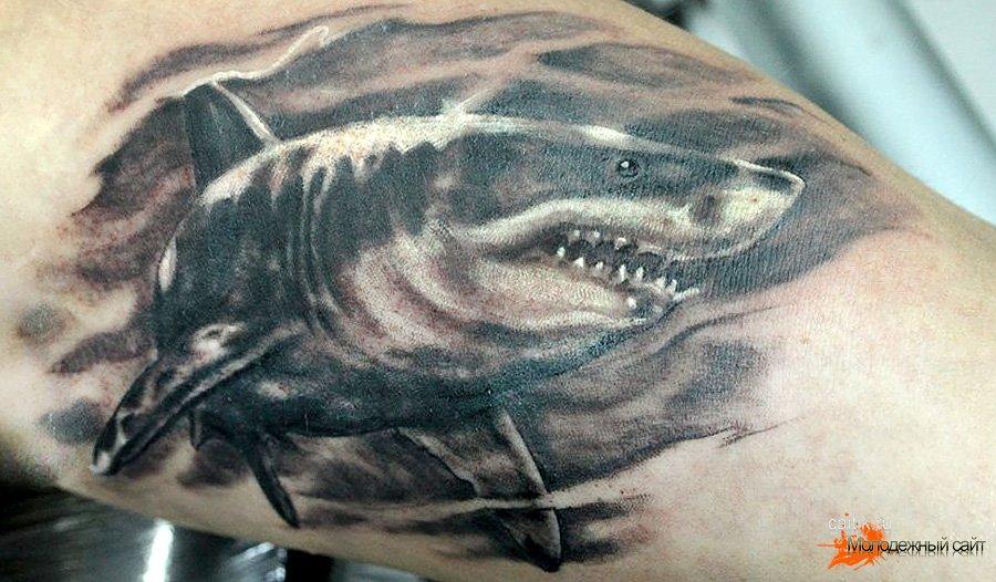 наколка акула значение на зоне