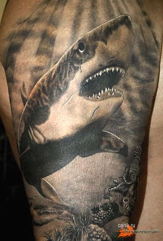Shark eating man tattoo