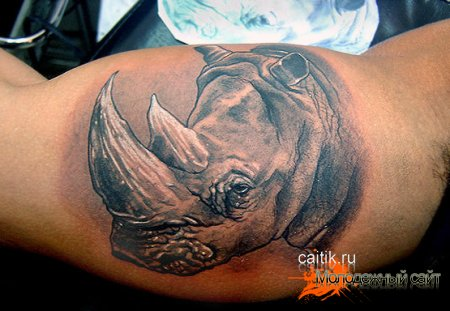 Татуировка носорог