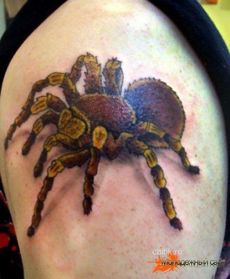 татуировка паука на плече