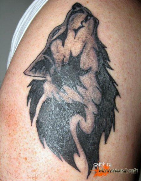 татуировка на руке волк воющий