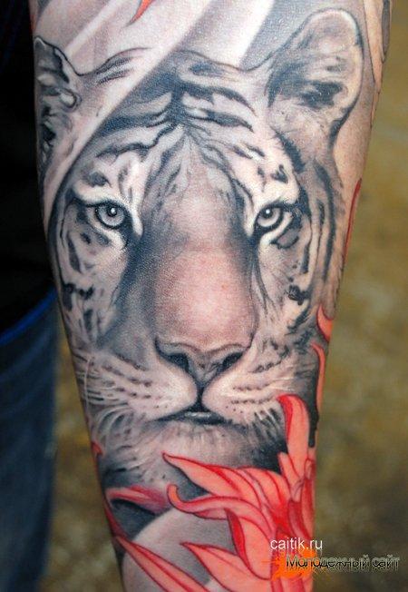 татуировка белый тигр