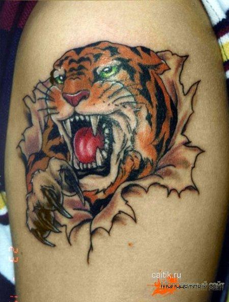 татуировка рычащего тигра на плече