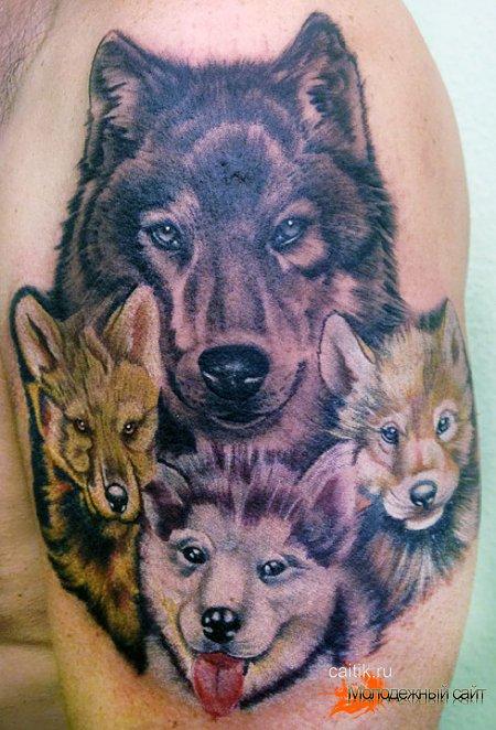 татуировка волчья семья