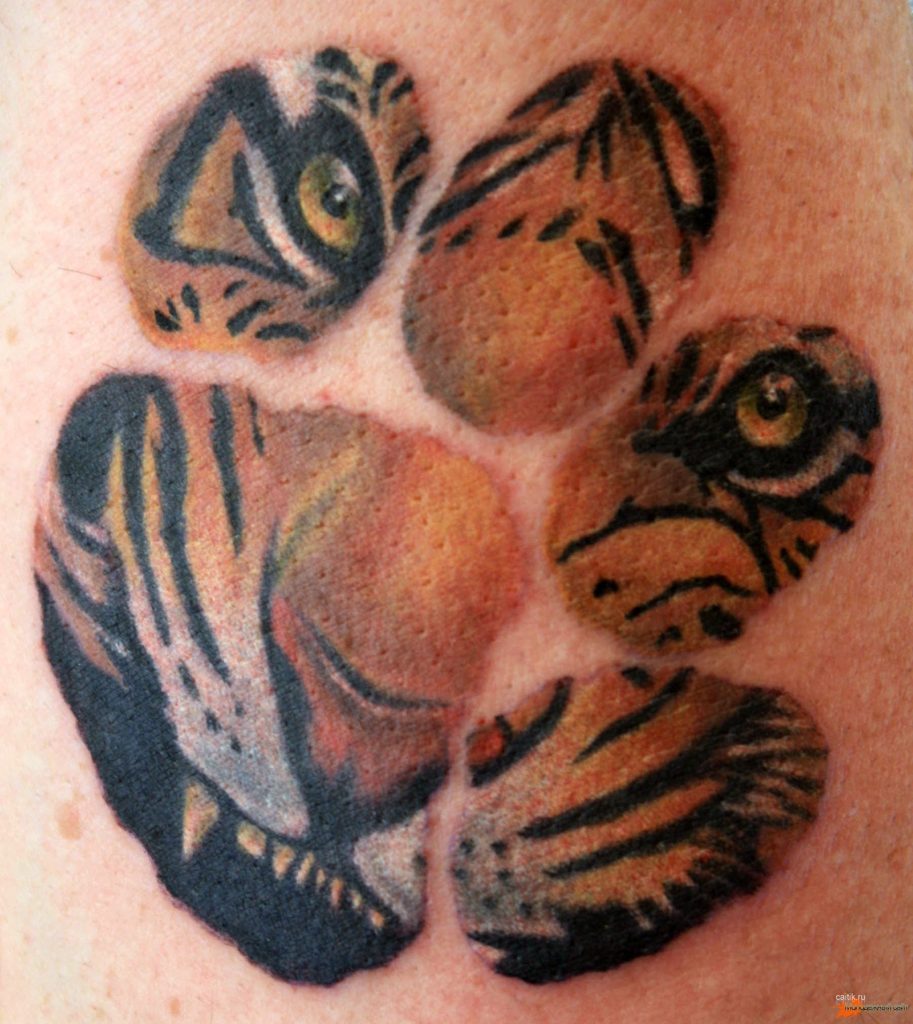tiger-tattoo-10.jpg