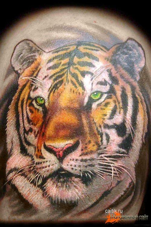 татуировка улитка
