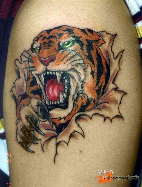 тату тигр на грудине мужские значение