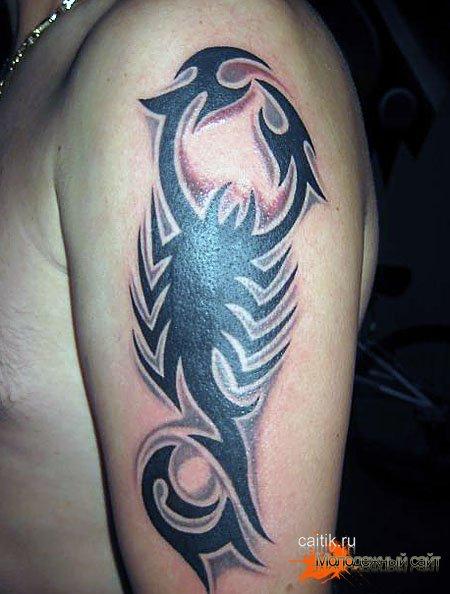 татуировка скорпиона на плече трайбл