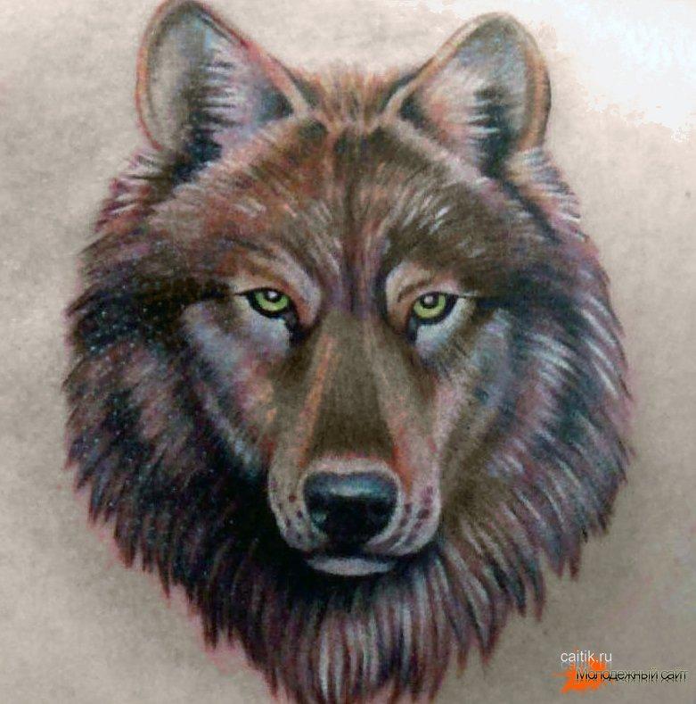 Морда волка татуировка 133