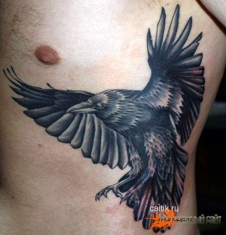 татуировка парящий ворон