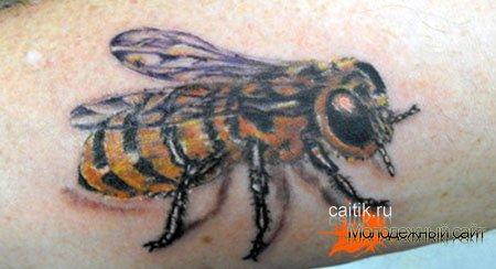 тату пчела