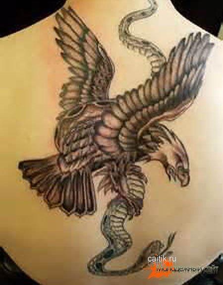 татуировка орел схвативший змею