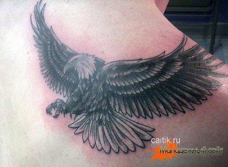 парящий орел на спине татуировка
