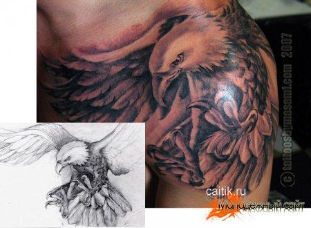 красивая татуировка орла с эскизом