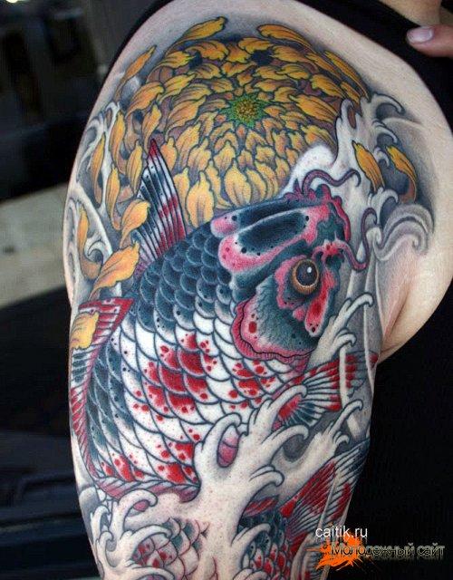 татуировка хризантема с карпом