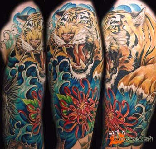 татуировка хризантема с тигром