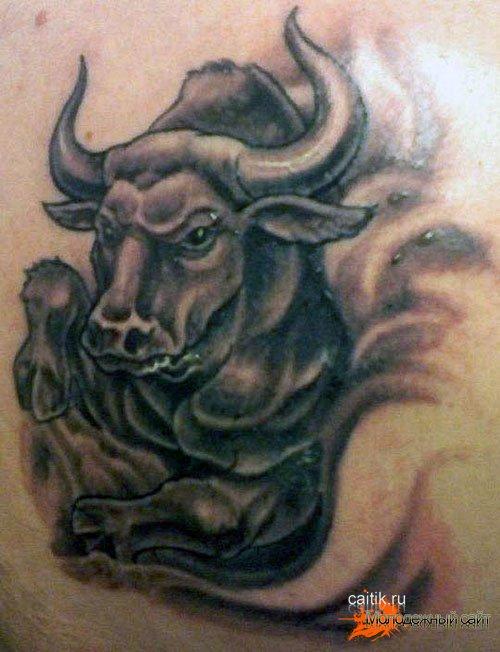 татуировка телец