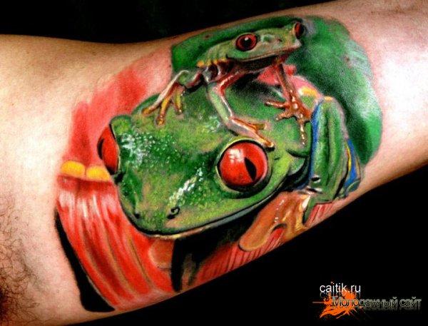 татуировки лягушки