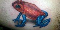 татуировка красная лягушка