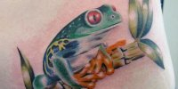 татуировка зеленая лягушка