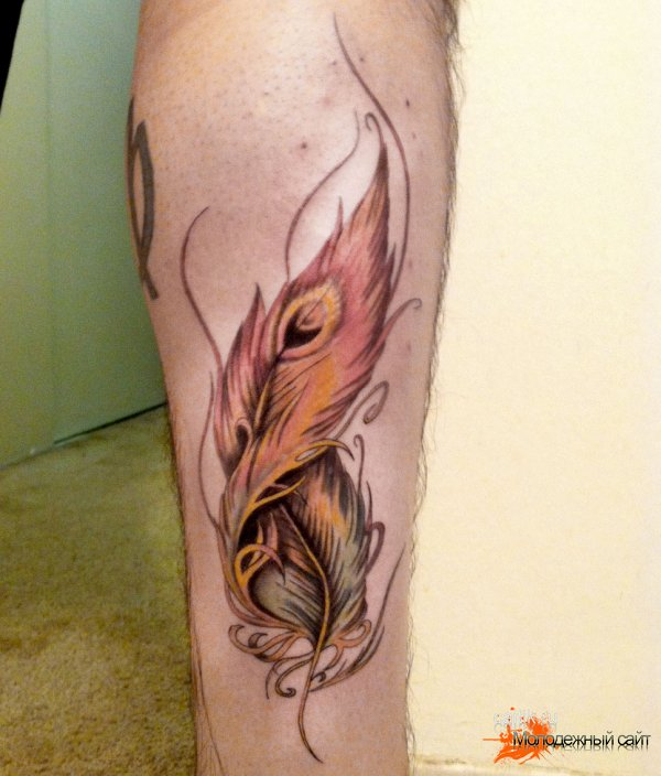 татуировка красивое перо на ноге
