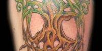 татуировка дерево в кельтском стиле