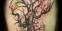 татуировка живое дерево