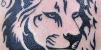стилизованы лев трайбл татуировка