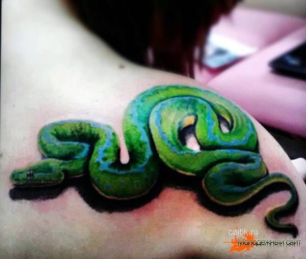 зеленый питон татуировка на лопатке