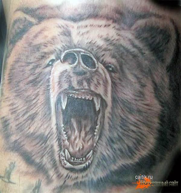 Татуировки медведя