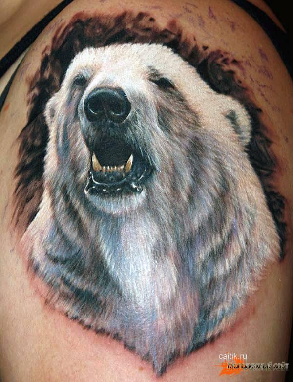 белый медведь татуировка